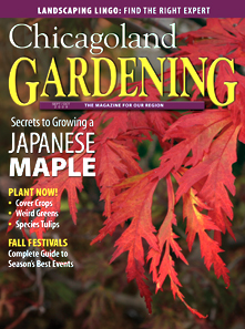 Fall 2009 cover