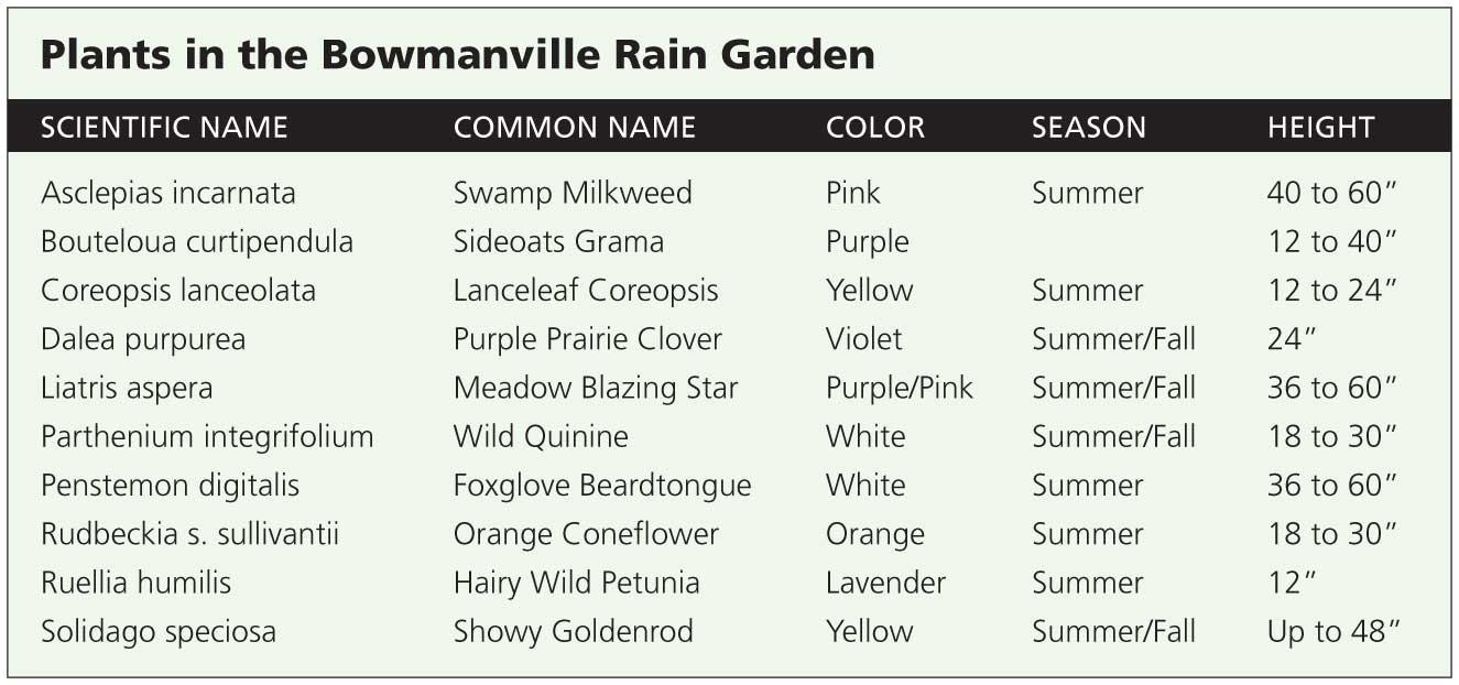 RainGarden_chart_web