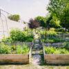 Gateway Garden Fundraiser